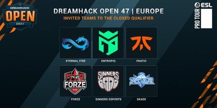 Fnatic и MAD Lions отобрались на DreamHack Open November 2021