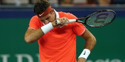 Хуан Мартин Дель Потро не сыграет на Australian Open