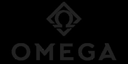 HellRaisers, Unique и B8 выступят в закрытой квалификации на OMEGA League по Dota 2