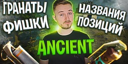 Видео: гайд от Петрика — название позиций и базовые гранаты на новой карте Ancient в CS:GO