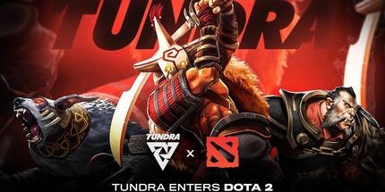 Tundra Esports подписала европейский микс mudgolems по Dota 2